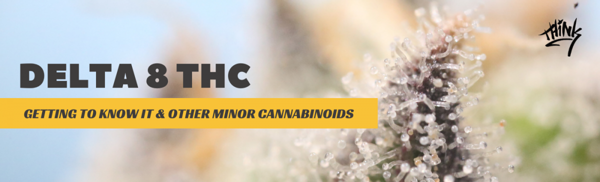 Delta 8 THC: Getting To Know It And Other Minor Cannabinoids