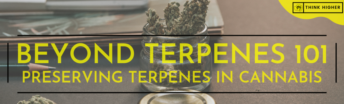 Terpenes 101 Preservation | Think Higher | Medical Cannabis